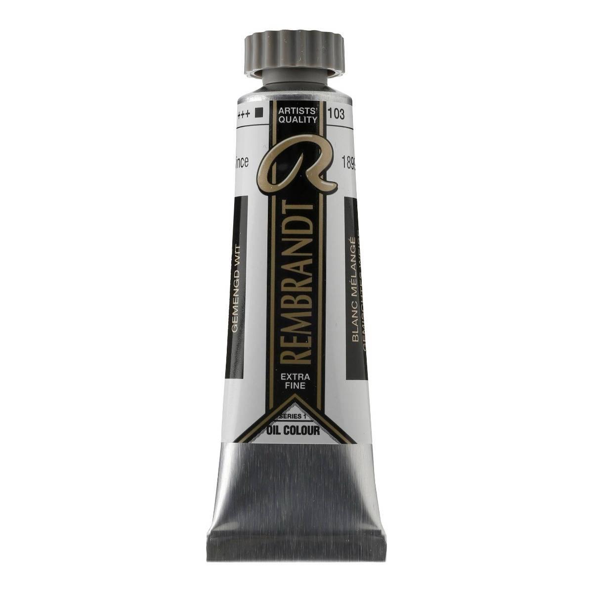 Rembrandt kunstner oliemaling 40 ml