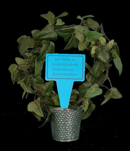 Planteskilte